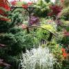 Красивые сады фото (12 фото)