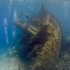 Интересные находки на дне моря
